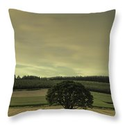 Lone Tree In The Field Throw Pillow
