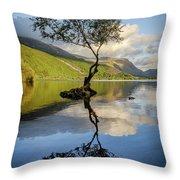Lone Tree, Llyn Padarn Throw Pillow