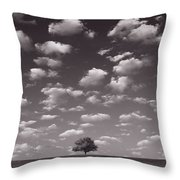 Lone Tree Morning In B And W Throw Pillow