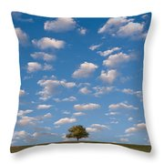 Lone Tree Morning Throw Pillow