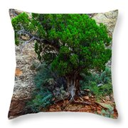 Lone Tree On A Cliff Throw Pillow