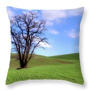 Lone Tree - Rolling Hills - Summer Sky Throw Pillow