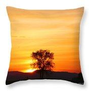 Lone Tree Sunset Throw Pillow