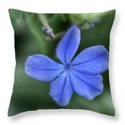 Lone Wildflower Throw Pillow