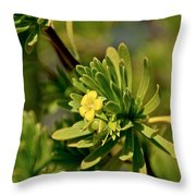 Lone Yellow Bloom Throw Pillow