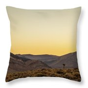 Loneliness At Sunrise Throw Pillow