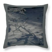 Loneliness In The Cold Throw Pillow