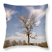 Loneliness Of The Battle Field Throw Pillow