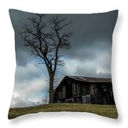 Lonely Barn Throw Pillow