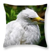 Lonely Bird Throw Pillow