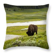 Lonely Bison Valley Throw Pillow