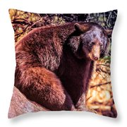 Lonely Black Bear On A Rock Throw Pillow