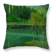 Lonely Buffalo Throw Pillow