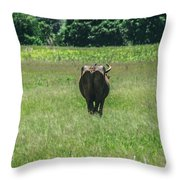 Lonely Cow 2 Throw Pillow