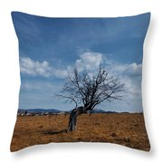 Lonely Dry Tree In A Field Throw Pillow