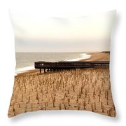 Lonely Dune Throw Pillow