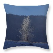 Lonely Frosty Tree Throw Pillow