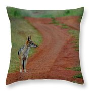 Lonely Jackal Throw Pillow
