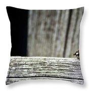 Lonely Ladybug Throw Pillow