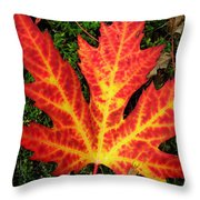 Lonely Leaf ... Throw Pillow
