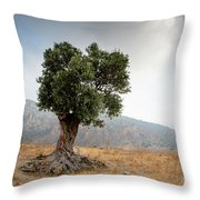 Lonely Olive Tree And Stormy Cloudy Sky Throw Pillow