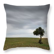 Lonely Olive Tree With Moving Clouds Throw Pillow