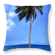 Lonely Palm Tree Los Tubos Beach Throw Pillow