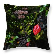 Lonely Red Leaf Throw Pillow