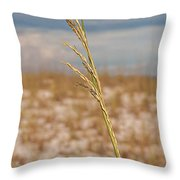 Lonely Sea Oat Throw Pillow