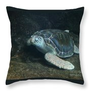 Lonely Sea Turtle Throw Pillow