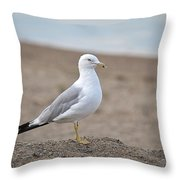 Lonely Seagull Throw Pillow