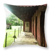 Lonely Stables Throw Pillow