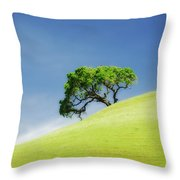 Lonely Summer Throw Pillow