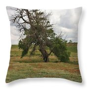 Lonely Tree In West Texas Throw Pillow