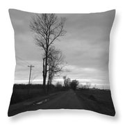 Lonesome Throw Pillow