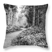 Long And Winding Path Throw Pillow