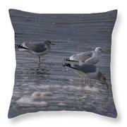 Long Beach 2018 Dsc_3604 Throw Pillow