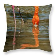 Long Colors II Throw Pillow