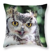 Long Eared Owl In The Trees Throw Pillow