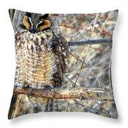 Long Eared Owl Resting Throw Pillow