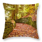 Long Fall Walk  Throw Pillow
