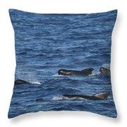 Long-finned Pilot Whales Throw Pillow