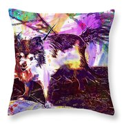 Long Haired Chihuahua Dog Pet  Throw Pillow