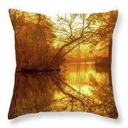 Long Island Gold   Throw Pillow