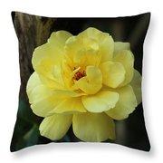 Single Yellow Rose  Throw Pillow