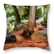 Long Journey Of A Tortoise Throw Pillow