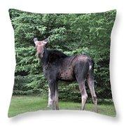 Long Legged Moose Throw Pillow