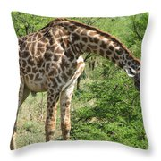 Long Neck Throw Pillow