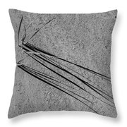 Long Shadows - 365-326 Throw Pillow