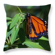 Long-since Retired Throw Pillow
